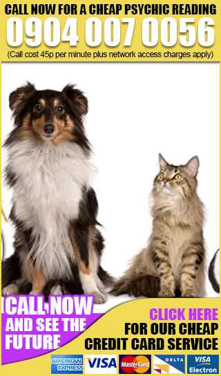 psychic-clairvoyant-readings_pet-readings-over-the-phone